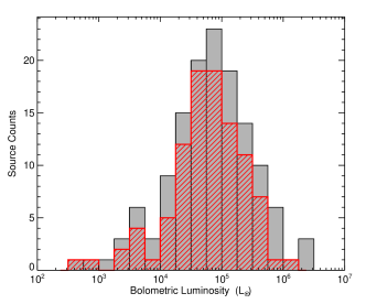 Bolometric luminosity distribution of the H