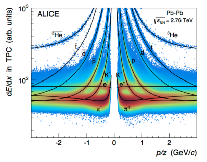Particle identification in the ALICE experiment via the specific energy loss and momentum measurement in the ALICE TPC and inner tracking system (figure taken from