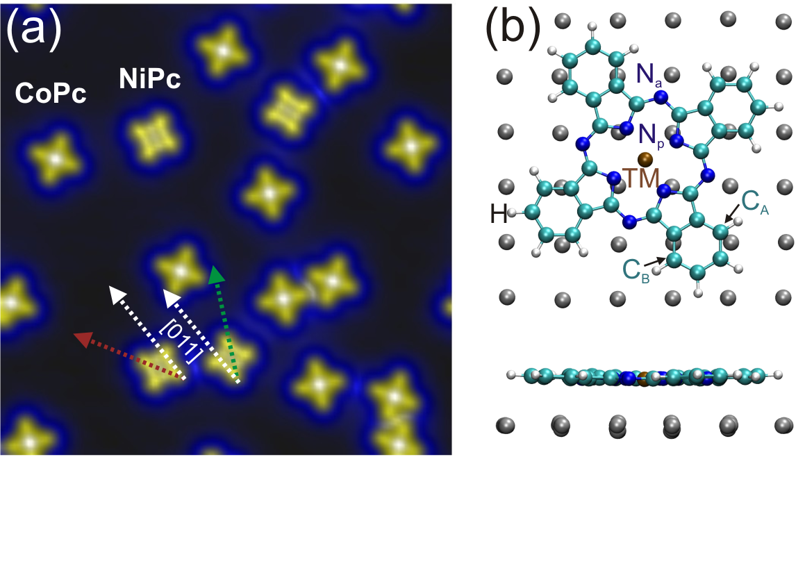 (Color online). a) Topographic image of CoPc and NiPc molecules co-deposited at room temperature on the Ag(100) surface (