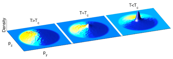 (color online) Momentum space density (logarithmic) for classical field simulations at various temperatures. Emergence of the condensate is visible as a prominent spike at temperatures below