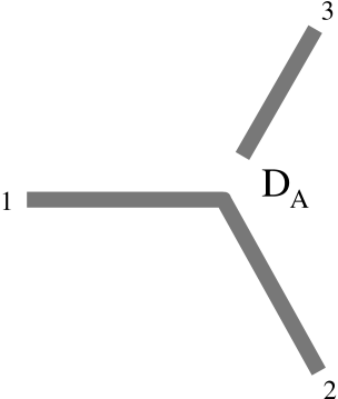 Pictorial representation of the asymmetric fixed point D