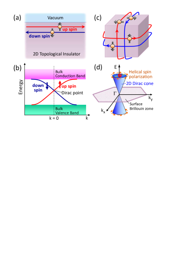 (Color online) Edge and surface states of topological insulators with Dirac dispersions. (a) Schematic real-space picture of the 1D helical edge state of a 2D TI. (b) Energy dispersion of the spin non-degenerate edge state of a 2D TI forming a 1D Dirac cone. (c) Schematic real-space picture of the 2D helical surface state of a 3D TI. (d) Energy dispersion of the spin non-degenerate surface state of a 3D TI forming a 2D Dirac cone; due to the helical spin polarization, back scattering from