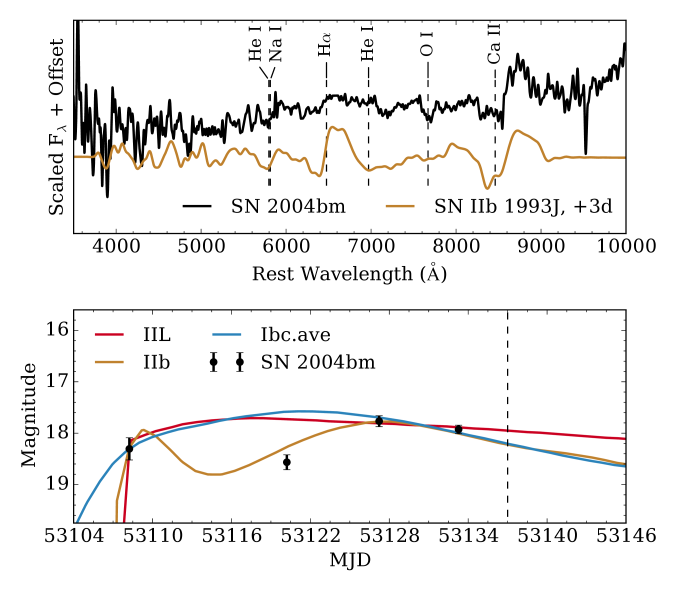 Top: spectrum of SN2004bm smoothed with a Gaussian kernel 40Åwide and compared to the near-maximum spectrum of the Type IIb SN1993J