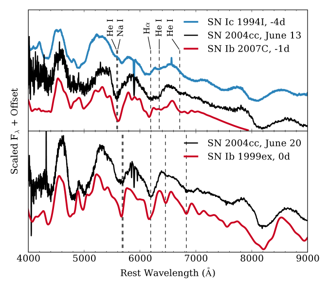 Top: spectrum of SN2004cc observed on UT2004-06-13 alongside premaximum spectra of SN Ic 1994I and SN Ib 2007C