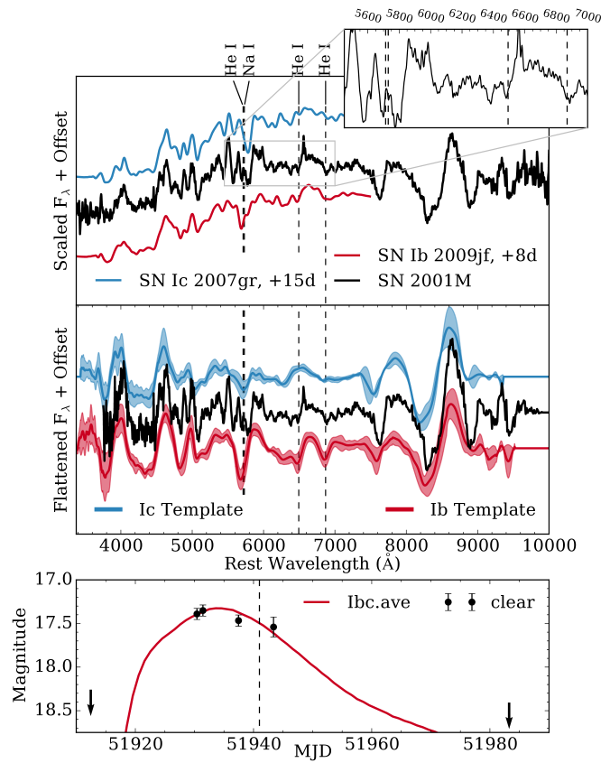 Top: spectrum of SN2001M smoothed with a 20ÅGaussian kernel, and with weak helium features identified. We also show spectra of SN Ic 2007gr and SN Ib 2009jf