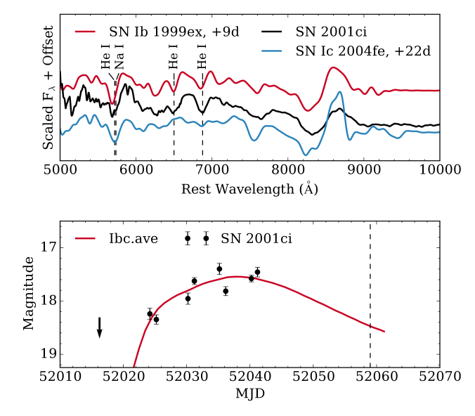 Top: spectrum of SN2001ci (corrected for a reddening of
