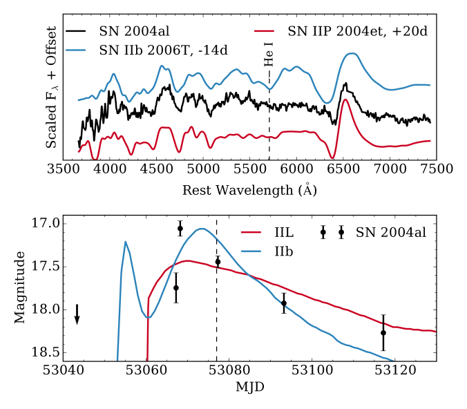 Top: spectrum of SN2004al smoothed with a 20ÅGaussian kernel and compared to spectra of the Type IIP SN2004et a few weeks after maximum