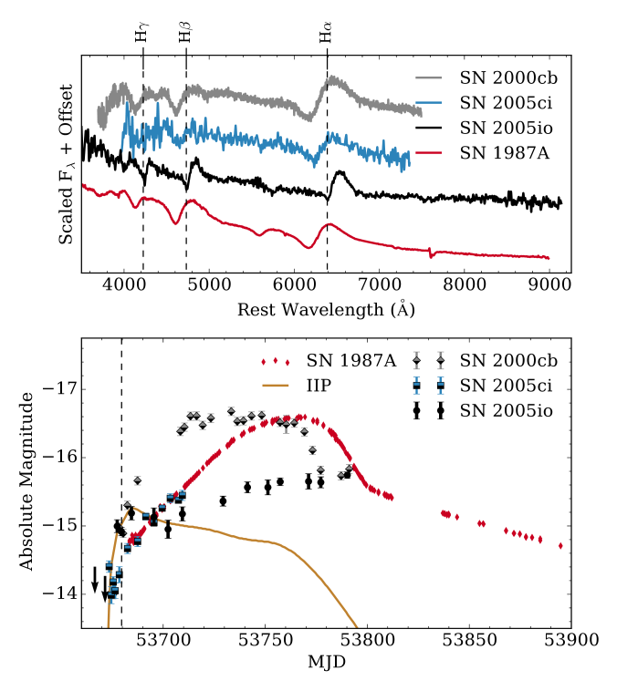 Top: spectrum of SN2005io compared to spectra of the young SNe2000cb, 2005ci, and 1987A
