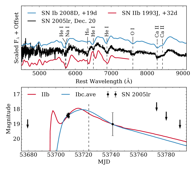 Top: the higher S/N spectrum of SN2005lr smoothed with a Gaussian kernel 10Åwide and compared to spectra of the SNIb 2008D and SNIIb 1993J