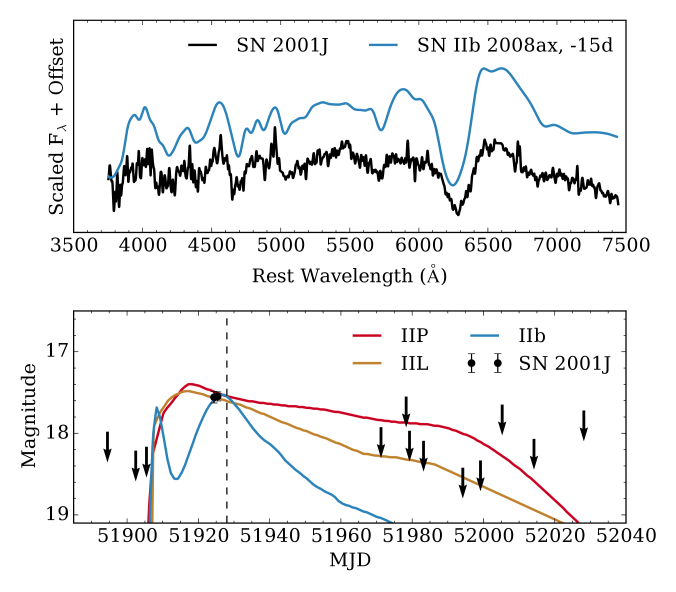 Top: the spectrum of SN2001J (smoothed by a 20ÅGaussian kernel) compared to that of the Type IIb SN2008ax
