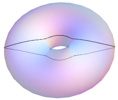The first picture shows a closed curve with constant non-zero geodesic curvature in the Clifford torus, the second picture a closed curve with geodesic curvature proportional to
