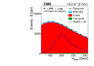 The WW invariant mass distribution with the fit projections in the signal region