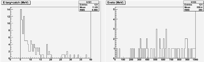 Distribution of the energy deposited by photons originated from near-miss muons in the Target (left) and in the veto (right).
