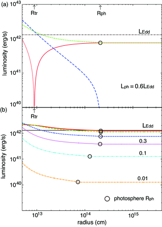 The profile of the radiative luminosity at the end of the simulation for