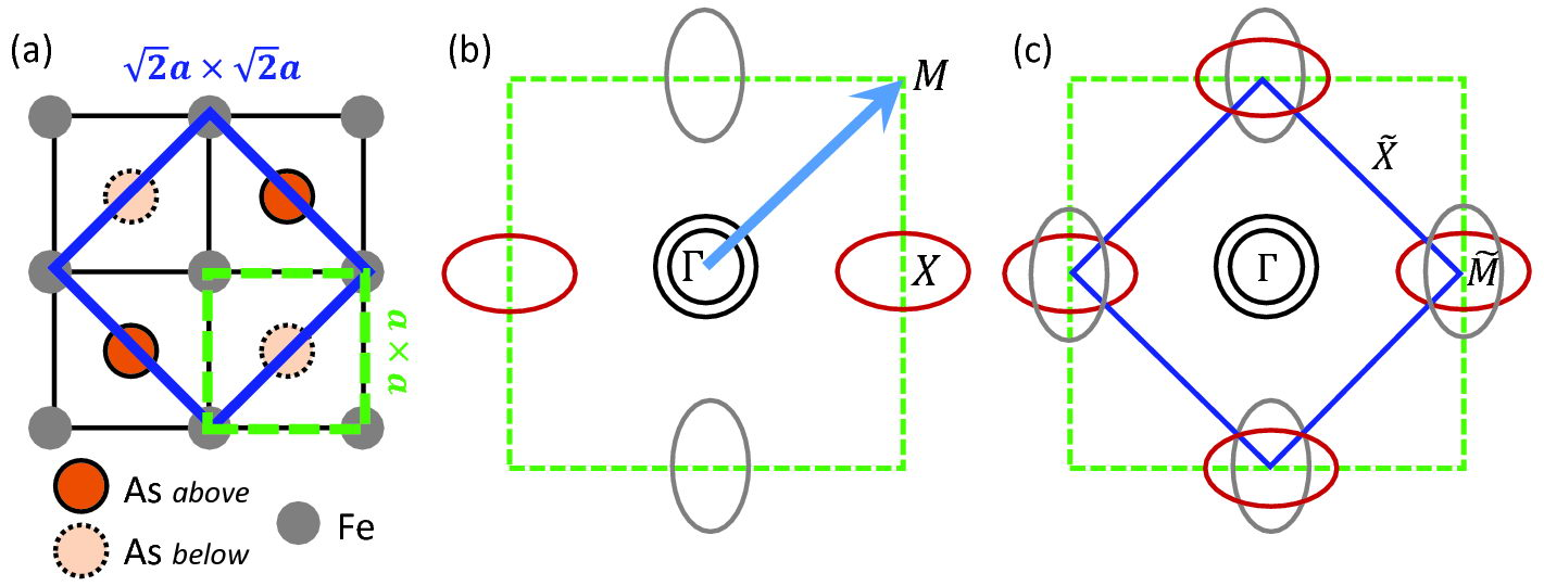 (a) FeAs lattice indicating As above and below the Fe plane. Dashed green and solid blue squares indicate 1- and 2-Fe unit cells, respectively. (b) Schematic 2-dimensional Fermi surface in the 1-Fe Brillouin zone whose boundaries are indicated by a green dashed square. Arrow indicates folding wave vector
