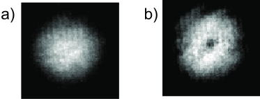 Optical thickness of the expanded clouds in the transverse direction showing the difference between the states (a) without and (b) with a vortex.
