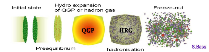 Different stages for relativistic heavy ion collisions