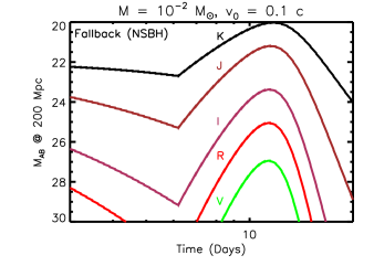 Kilonova light curves powered by fall-back accretion, calculated for the same parameters of total ejecta mass