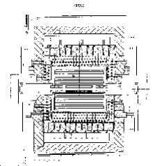 ARGUS Detector (elevation view from ref.
