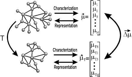 Additional measurements of a complex network can be obtained by applying a transformation