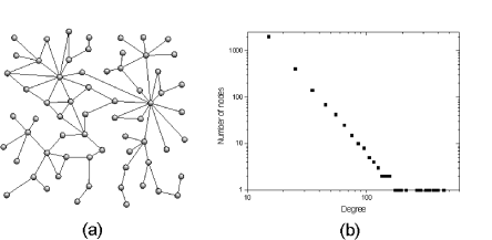 The scale-free network of Barabási and Albert. (a) an example of a scale-free network and (b) average degree distribution over