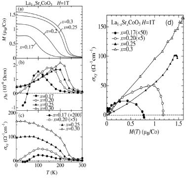 Temperature dependence of the magnetization