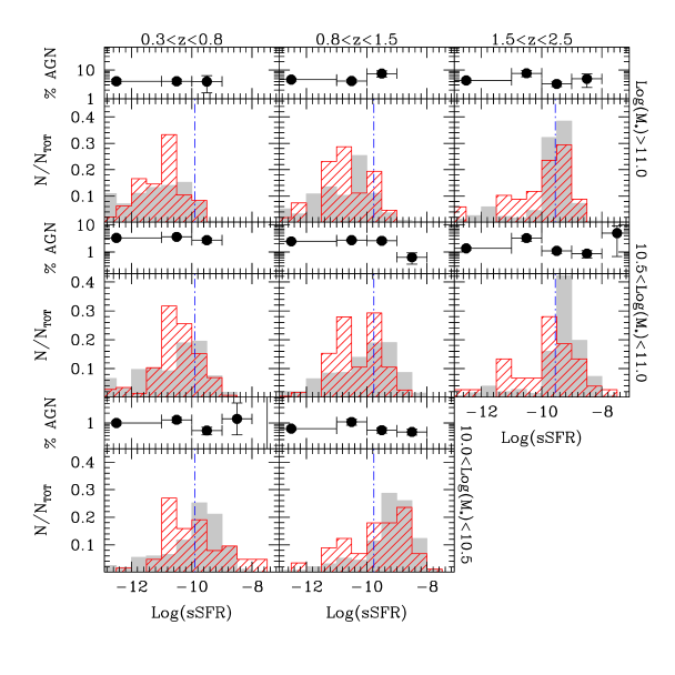 Specific star formation rate distributions divided in three redshift bins and three mass ranges for type–2 AGN host galaxies (red histogram) and normal galaxies (gray histogram). Dot-dashed vertical blue lines are used to distinguish quiescent from star-forming galaxies based on the ratio between the mass doubling time