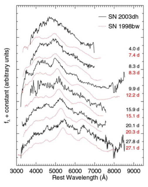 A comparison of the rest frame optical spectrum of SN 1998bw and SN 2003dh (associated with GRB 030329). The spectral features and evolution show a remarkable similarity suggesting that the SN explosions of cosmological GRBs are connected to the mechanisms inferred for 1998bw. The afterglow component has been modeled and removed from the observed spectra. From