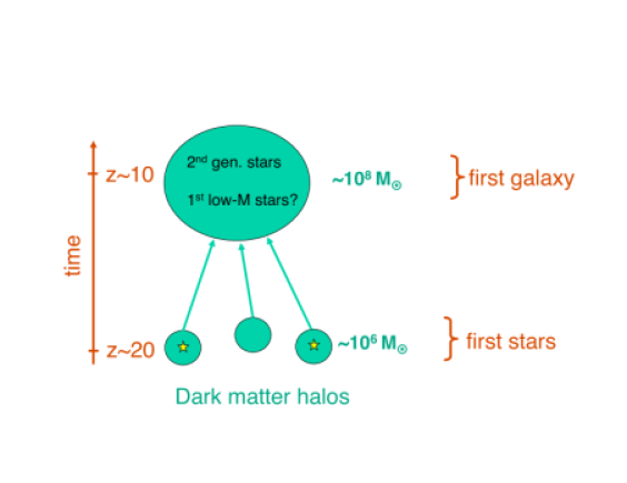Assembly of the first galaxy. We here illustrate the scenario where the first galaxies reside in atomic cooling halos. These comprise total masses of
