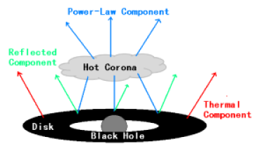 Corona-disk model with lamppost geometry. The BH is surrounded by a geometrically thin and optically thick accretion disk. The accretion disk radiates like a blackbody locally and as a multi-color blackbody when integrated radially. The hot electron cloud called corona acts as an X-ray source and it is located just above the BH. The power-law component represents the direct radiation from the hot corona. The latter illuminates also the disk, producing a reflection component and some emission lines, the most prominent of which is usually the iron K
