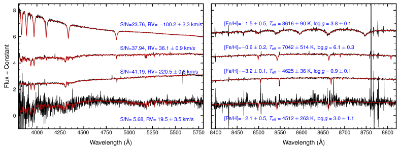 Examples of reduced 1D spectra from the blue arm (
