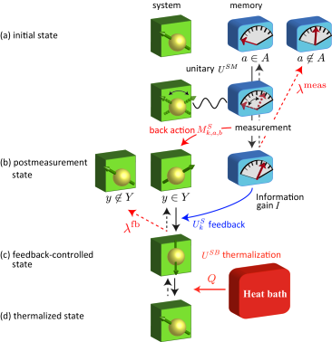 Schematic illustration of the protocol. Solid downward arrows indicate the forward process and the dashed upward arrows show the backward process.