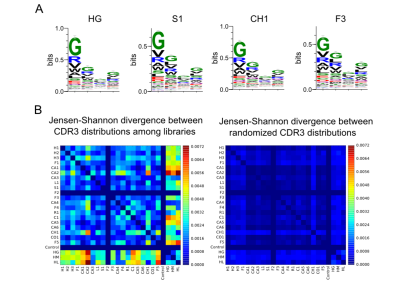 Diversity of the libraries – The different libraries are intended to harbor the same distribution of amino acids at the 4 varied positions. We measured these distributions by sequencing samples from the initial libraries.