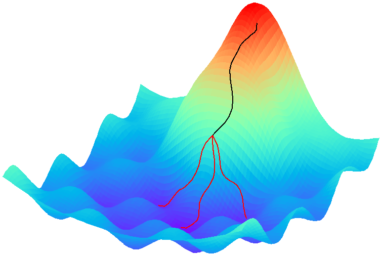 Illustration of the optimization process in the Hydra framework. The black line represents the coarse parameter optimization that forms the Hydra's body. The red lines represent the Hydra's heads, which are obtained after fine tuning the body parameters multiple times seeking to reach different local minima.