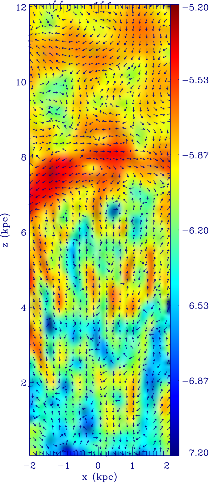 Detailed slice in simulation coordinates of magnetic field morphology in a model Fermi Bubble
