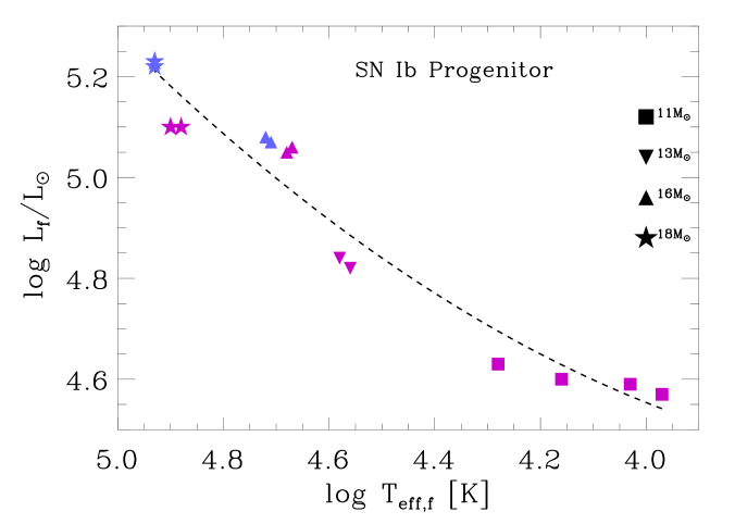 The final positions of our SN Ib progenitor models on the HR diagram. The different symbols indicate the corresponding initial masses, as indicated by the associated numbers. LMC and solar metallicity models are marked by blue and purple colors, respectively.