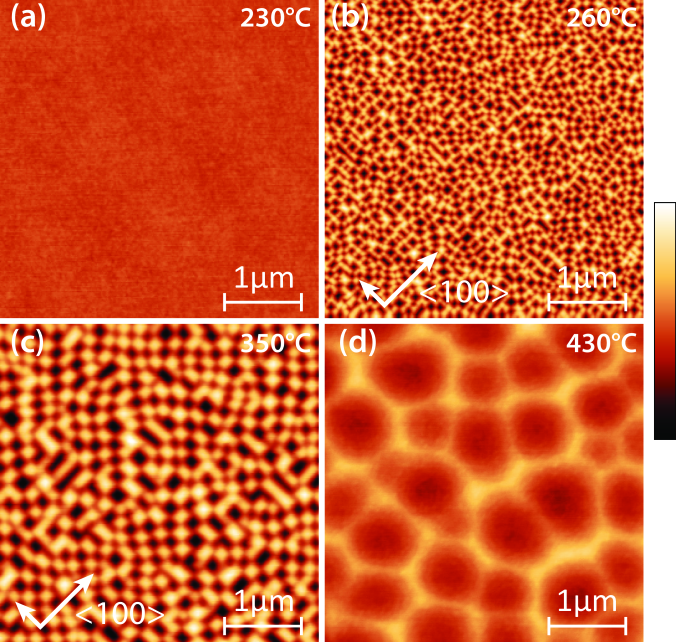 AFM height images (