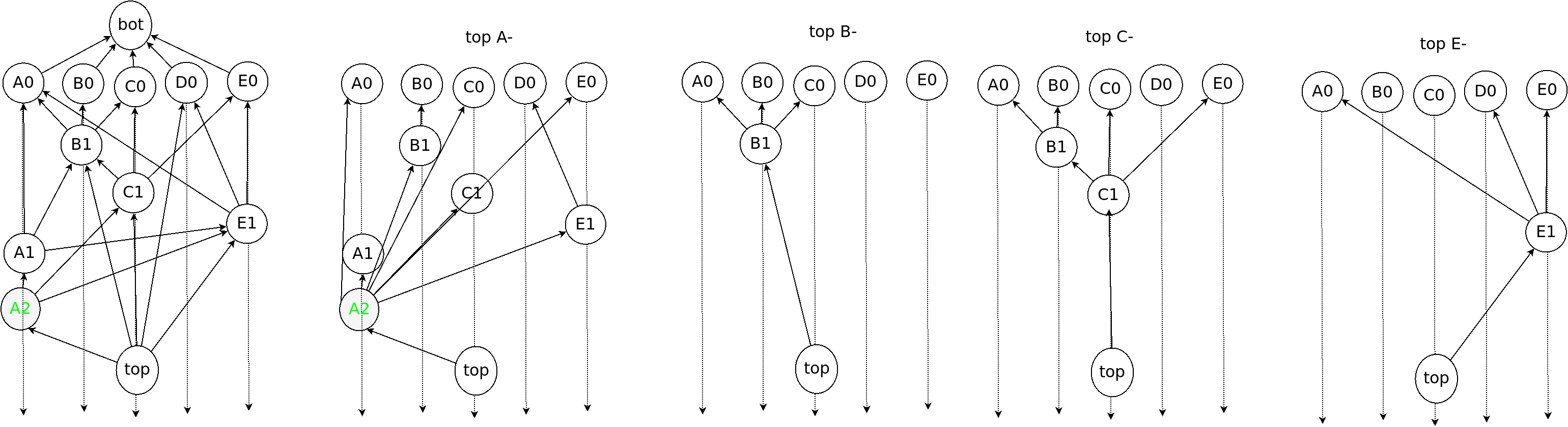 Examples of OPERA chain and dominator tree