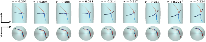 Temporal sequence of radial (top) and axial (bottom) snapshots from GP simulations showing in detail two interacting vortex lines undergoing a double reconnection. The snapshots refer to the numerical simulation reported in Fig. 4b, here illustrated employing a finer temporal resolution.