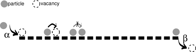 Illustration of the Totally Asymmetric Simple Exclusion Process with open boundaries. The entrance and exit rates at the left and right end of the one-dimensional lattice are given by