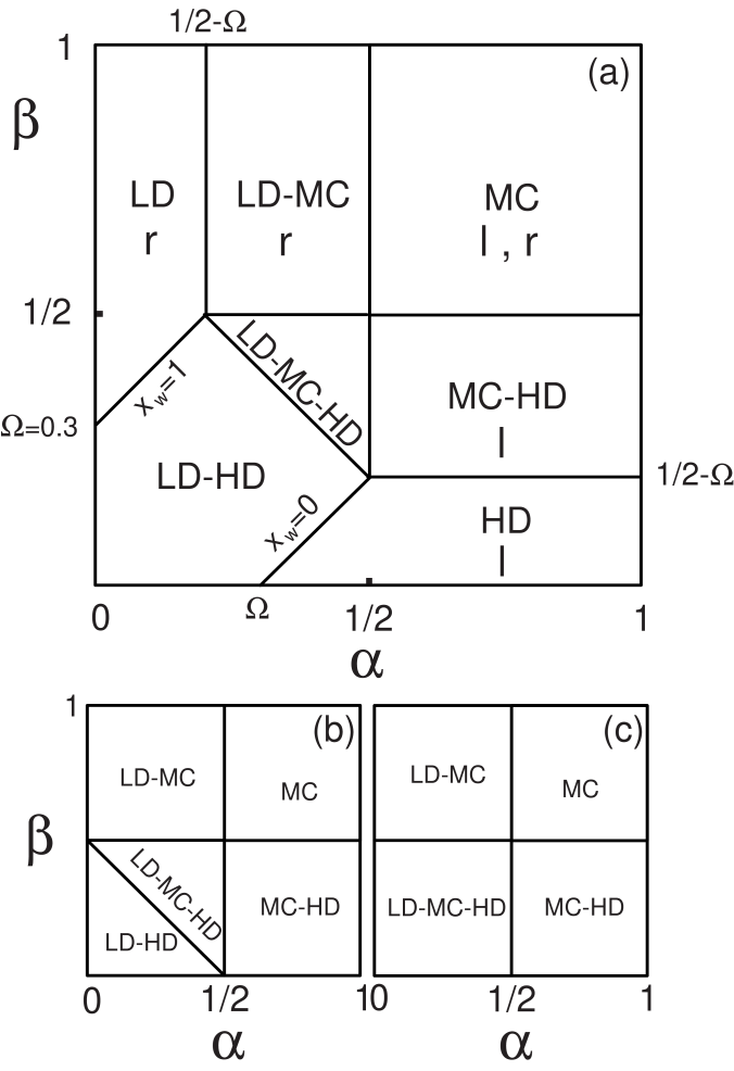 Cut of the phase diagram on the