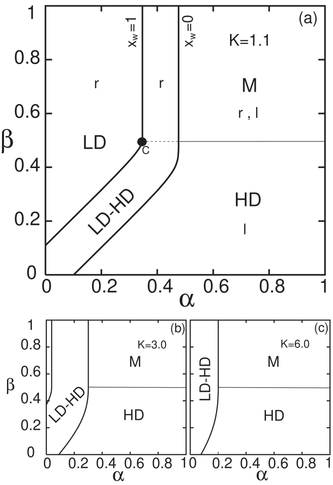Cuts of the phase diagrams on the