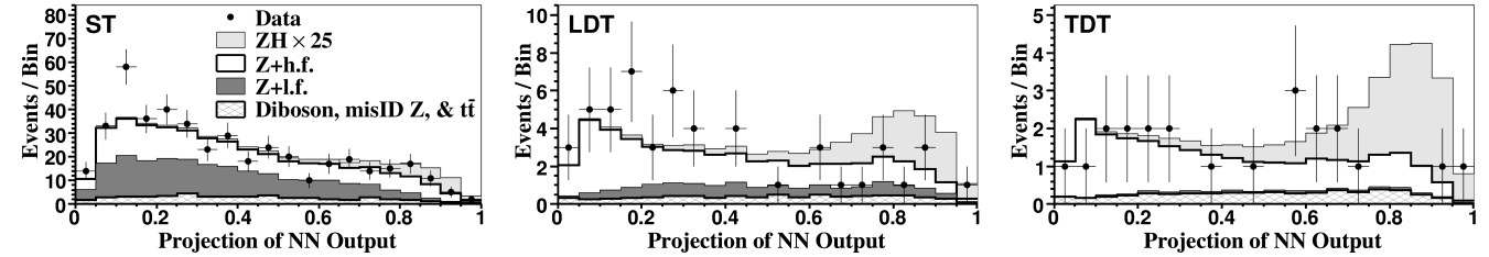 Projections of the two-dimensional neural network (NN
