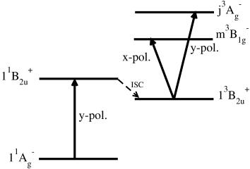Diagram depicting the important states in the triplet excited state absorption in oligoacenes, along with their polarization characteristics. The optical absorption is denoted by the arrows connecting two states, and the polarization directions are denoted next to them. Inter-system crossing (ISC) is shown as dotted lines. Location of the states is not up to scale.