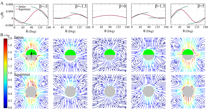 (A) The surface velocity of an active Janus particle (green line) and a squirmer swimmer (red line) for five values of