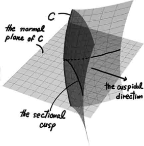 A cuspidal edge and its sectional cusp