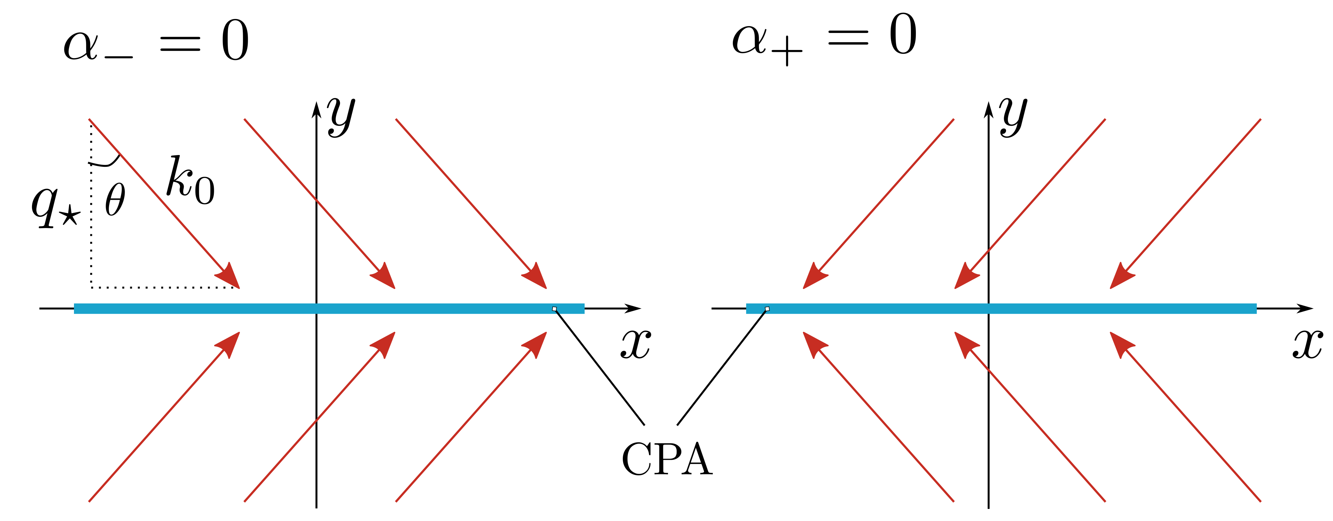 Schematic illustration for the CPA confined in the straight line and the perfectly absorbed solution (