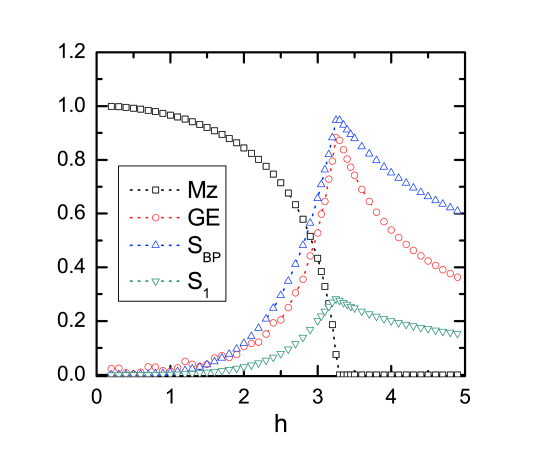 Geometric entanglement and other measures for the 2D Ising model as a function of the transverse field. Geometric entanglement (circles), entanglement entropy (triangles up), single-site entropy (triangles down) and transverse magnetisation (squares) are calculated for a system of size