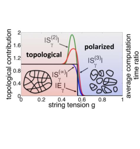 Different topological entanglement measures for the toric code versus the string tension applied: GE (black), single-copy entanglement (blue) and Renyi entropies of order 2 and 3 (red and green, respectively). (Results reprinted from