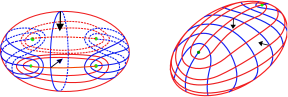 Two views of the global behavior of 4 umbilic points and principal foliations